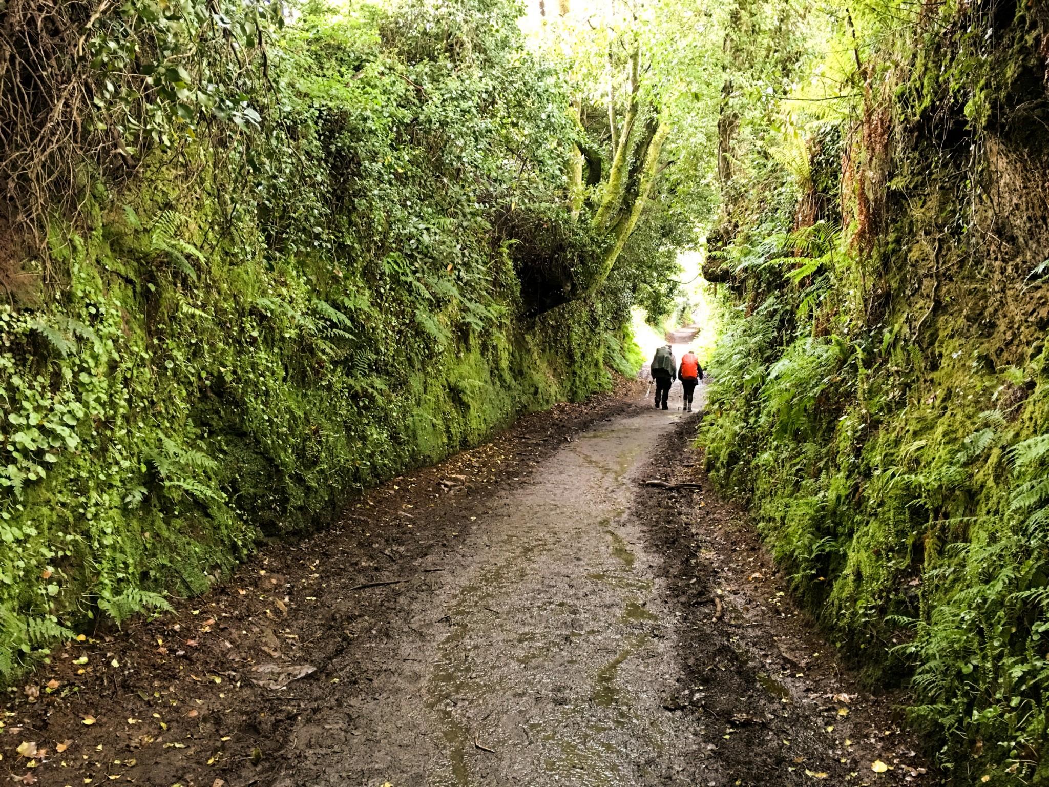 Camino-de-Santiago-tips