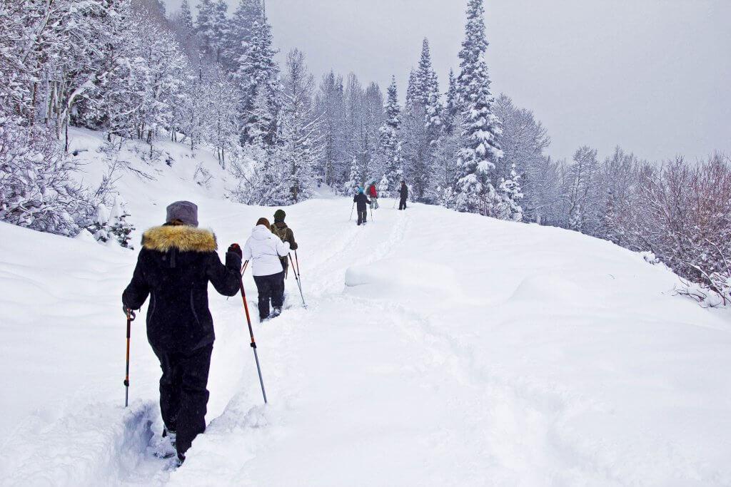alternative ski holidays snowshoeing