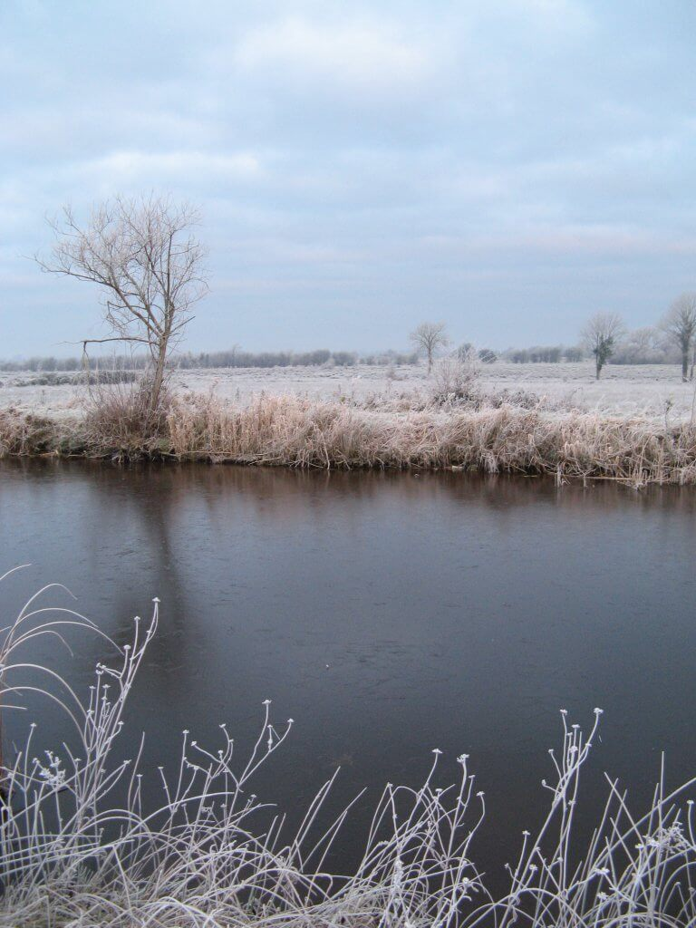 The Grand Canal on a frosty morning
