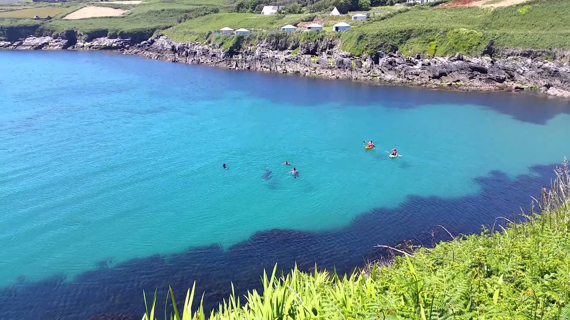 BAsking shark clare island irish island getaways