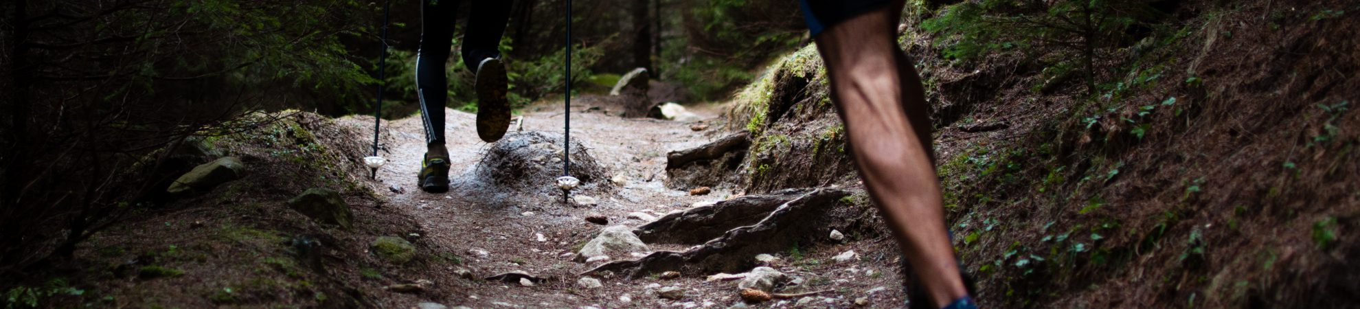 Trail Running: All the Gear you Need to Get Started