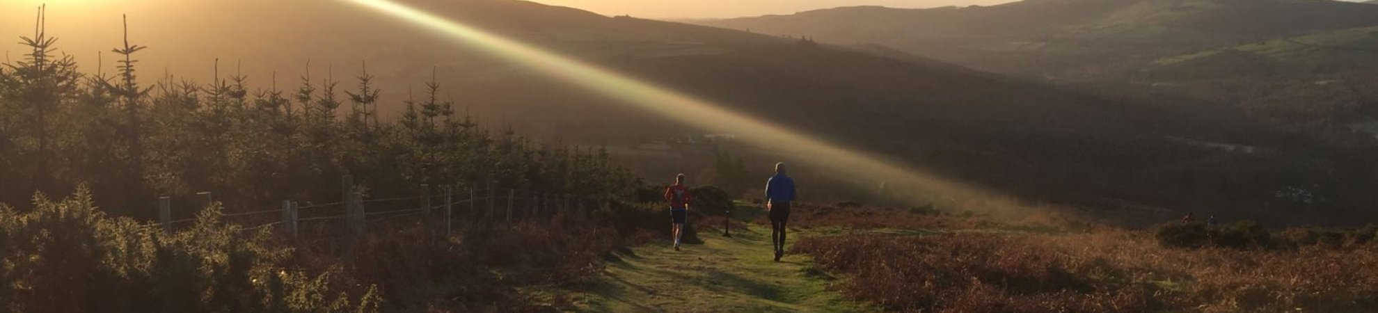 the wicklow way race