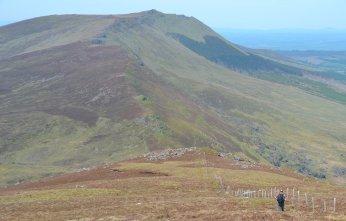 comeragh mountains (10)