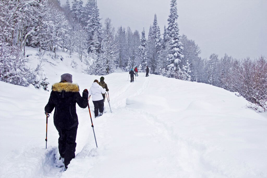 alternative ski holidays snowshoeing