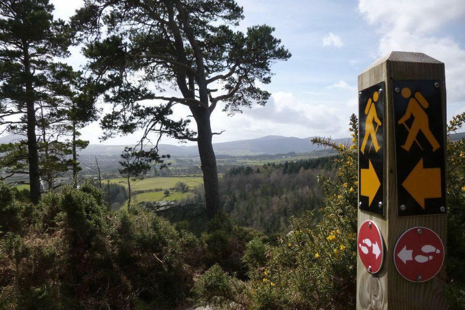 Dublin Mountains Partnership