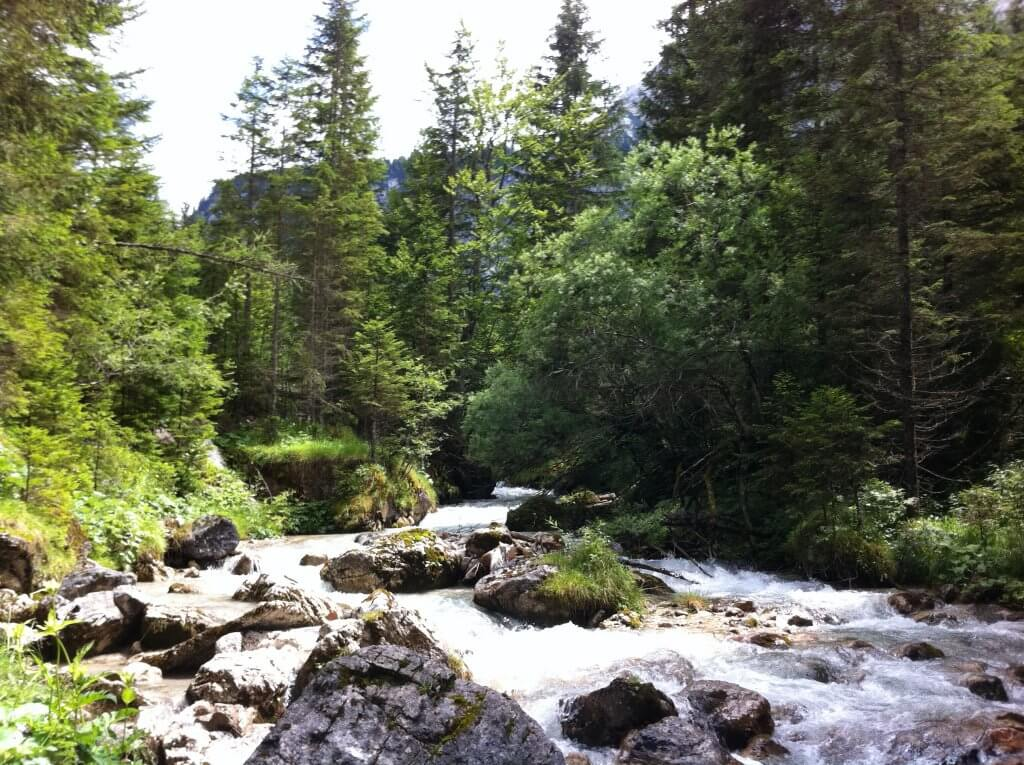 White water in Erhwald
