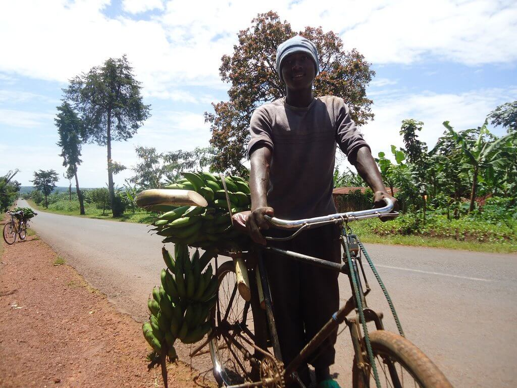 Rwanda boy on the way to market.