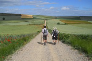 Follow the Camino