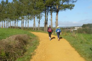 Camino routes alternative