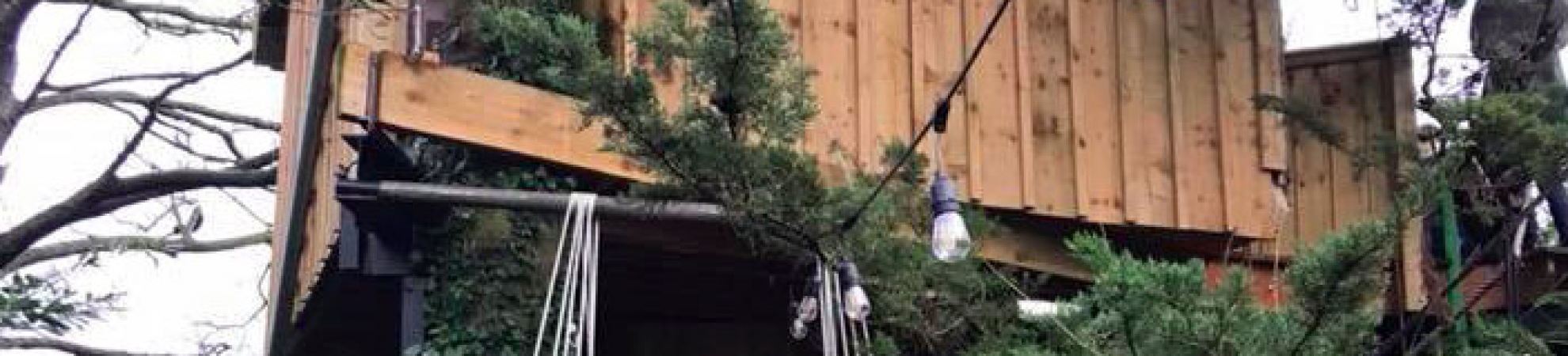 Tranquilla Tree Airbnb