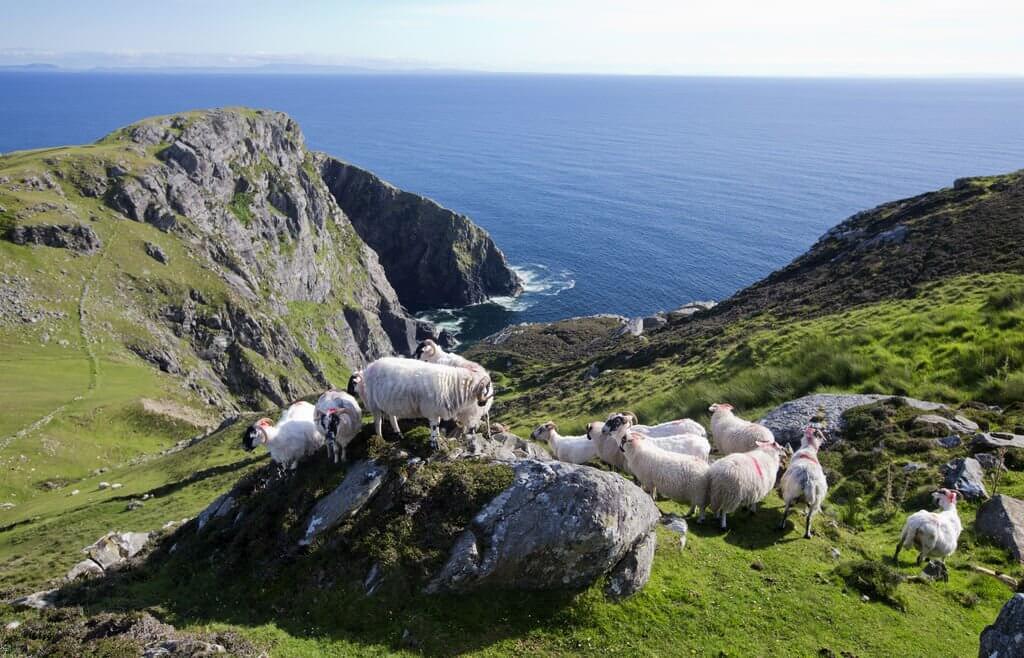 Family Friendly Activities Ireland