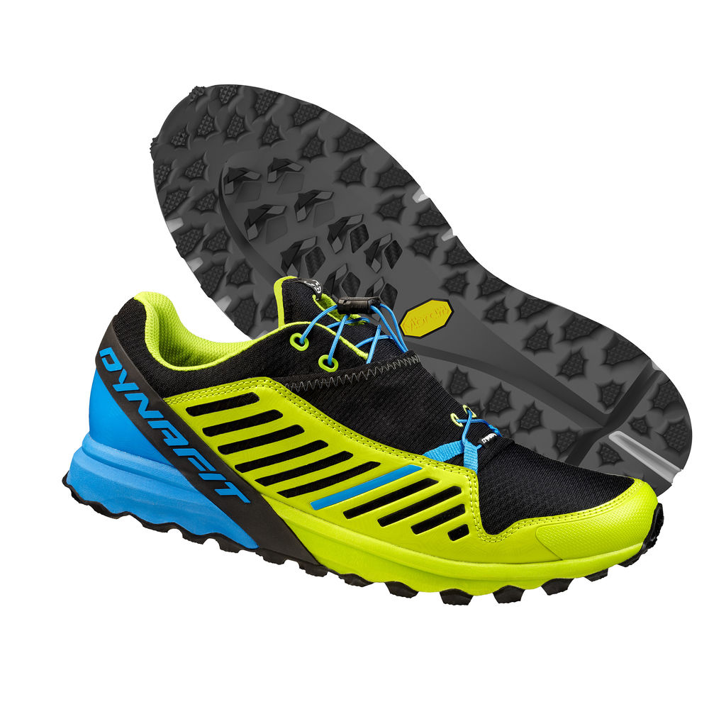 Dynafit Apline Pro trail running shoe