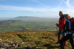 Limerick Trails