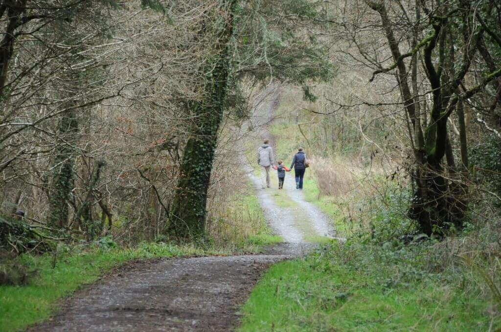 Family-Friendly Hikes Leinster