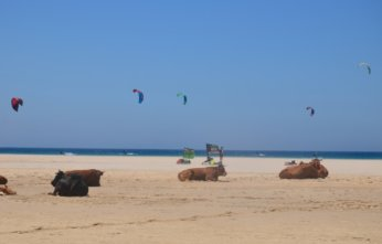 alternative beach holidays tarifa