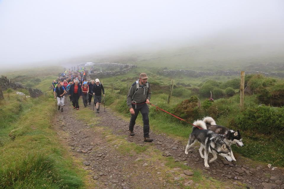 Dog-Friendly Walks in Kerry