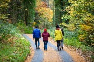 looped walks irelands ancient east