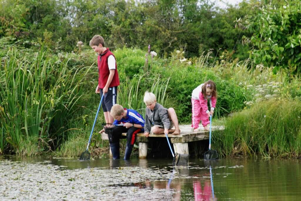cabragh wetlands trust