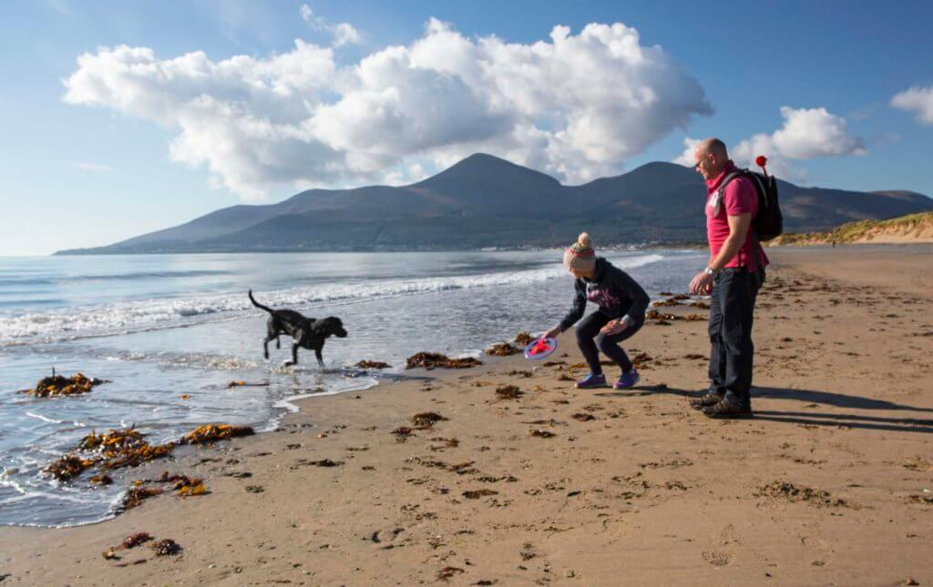 Murlough National Nature Reserve, Newcastle, Co Down