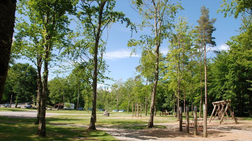 Curraghchase Forest Park Limerick
